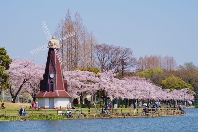 The windmill, a symbol of Ukima Park