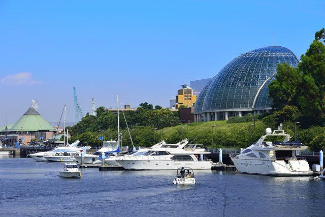 東京夢之島觀光港口