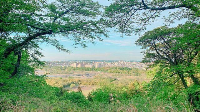 眺望城市風景