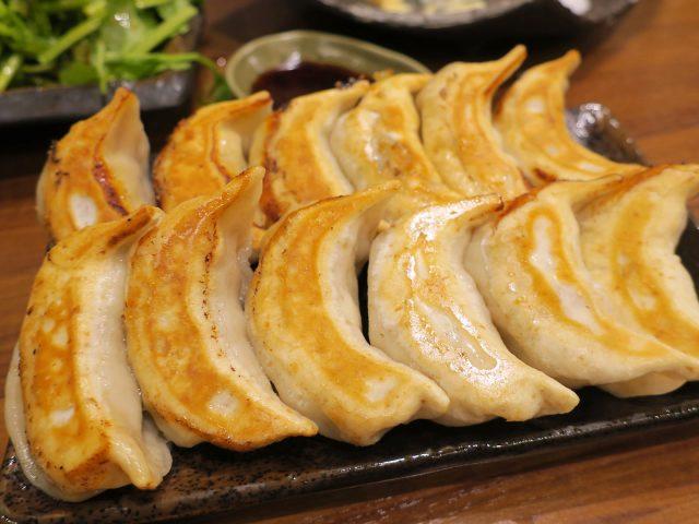 Juicy Fried Gyoza Dumplings