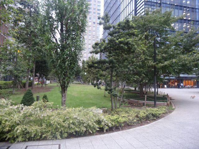 綠意盎然的庭園