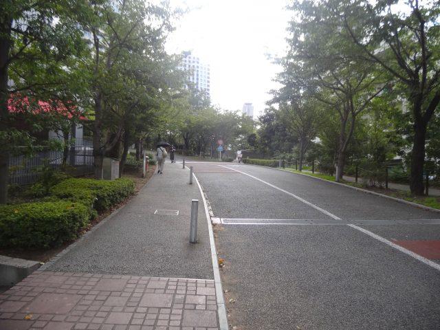 Sakurazaka road