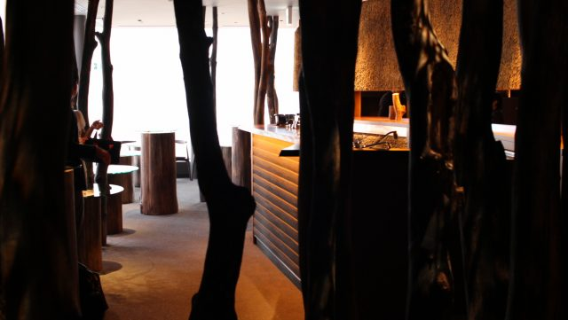There are so many trees inside the restaurant!
