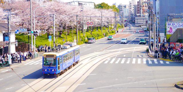 Tokyo Sakura Tram(都電荒川線)