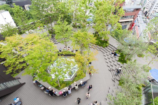 6層OMOHARA之森