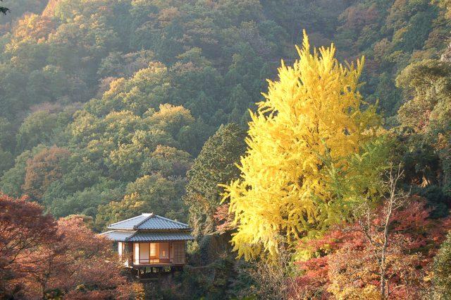 行道山淨因寺被稱為「關東的高野山」,還是關東地區著名的賞楓景點。