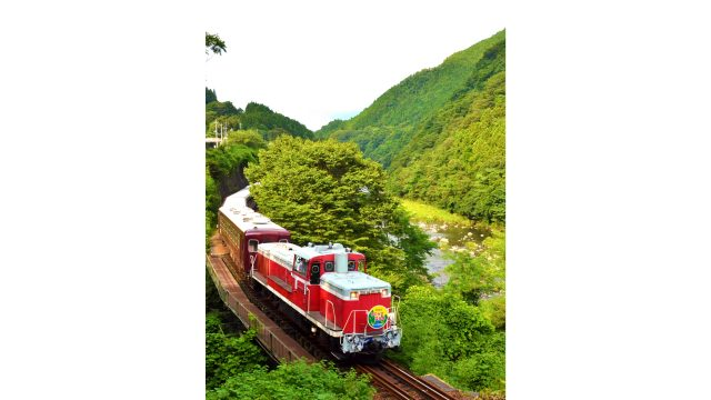 Trolley Watarase Gorge running through the gorge's fresh green leaves