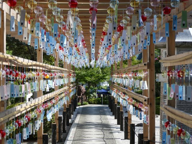 Wind Chime Festival in the summer. There are many wind chimes with wishes written on them.