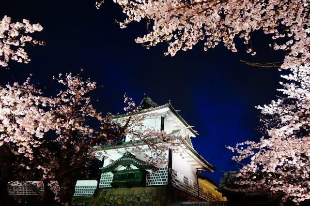 春天的金澤城點燈